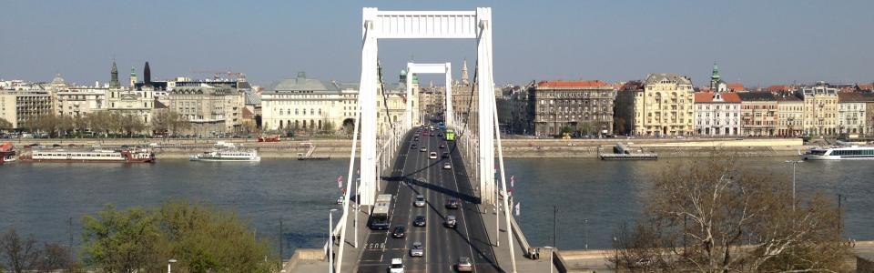 elizabeth-bridge-730243.jpg