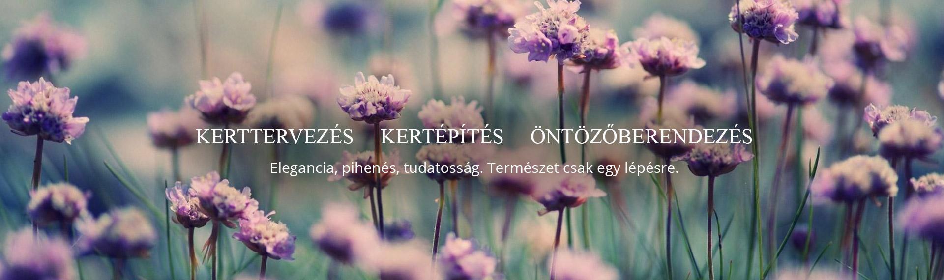 kotelewstamas-header-pc-004.jpg