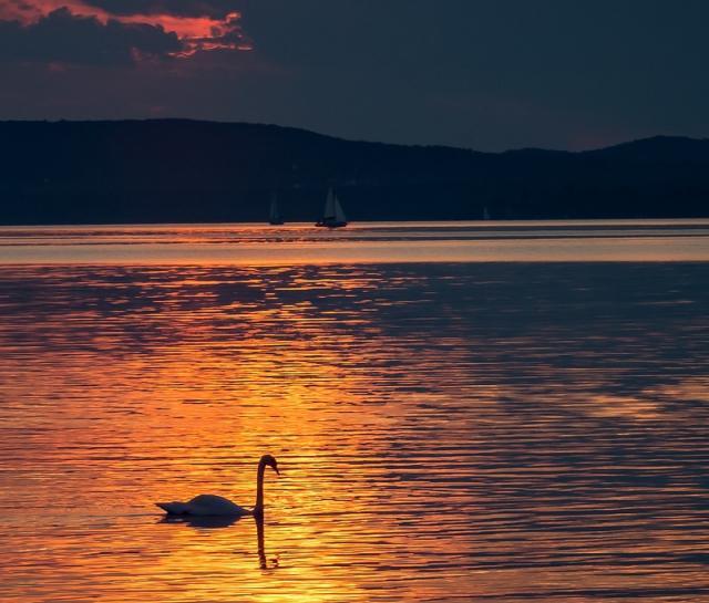 lake-balaton-1608565-1920-1.jpg