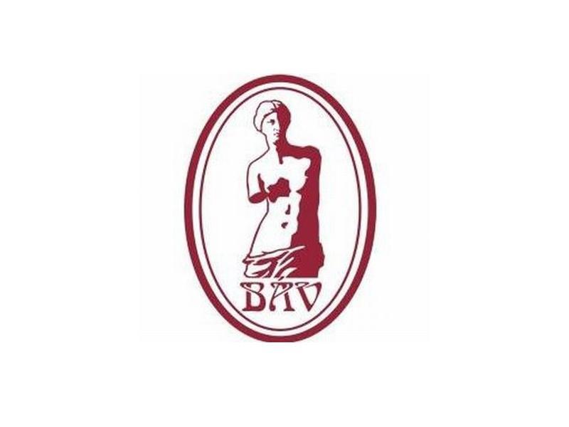 BÁV-web.jpg